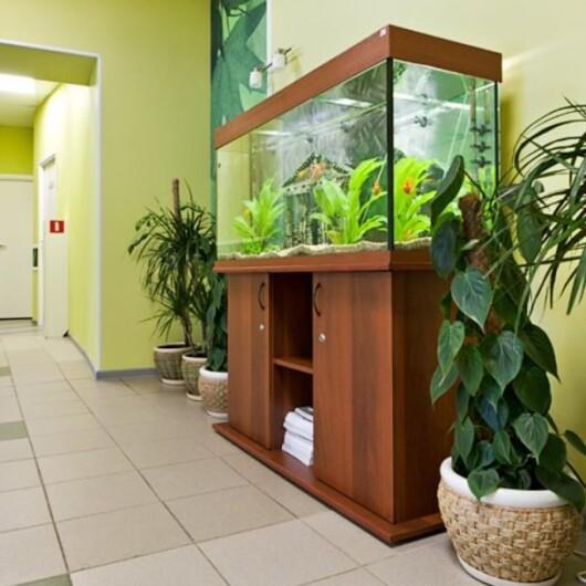 Медицинский центр XXI век (21 век) на Коломяжском, фото №2