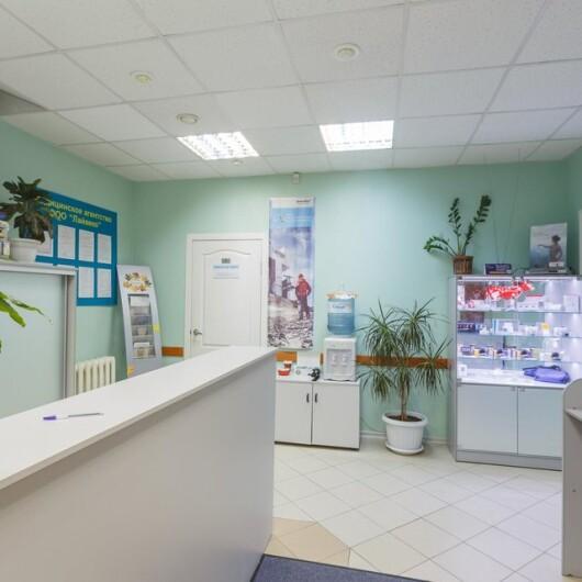 Медицинский центр Лайвеко, фото №3
