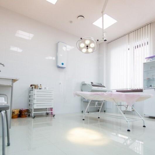 Клиника доктора Рогажинскас Красный Проспект, фото №3