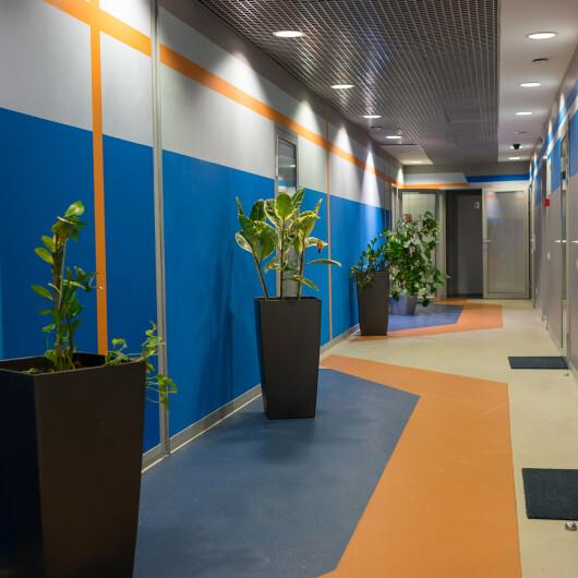 Медицинский центр Свобода движения, фото №1