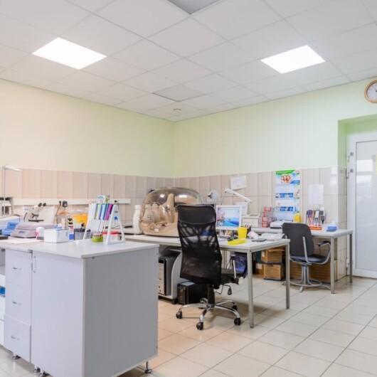 Клиника Европейский Институт Здоровья Семьи, фото №4