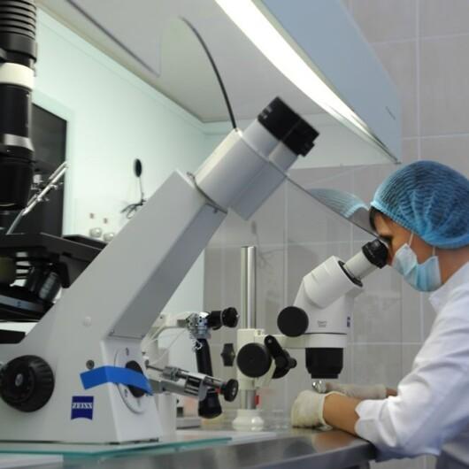 Клиника репродуктивной медицины при ЦКБ №2 им. Семашко, фото №3