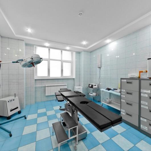 Клиника К-Медицина, фото №4