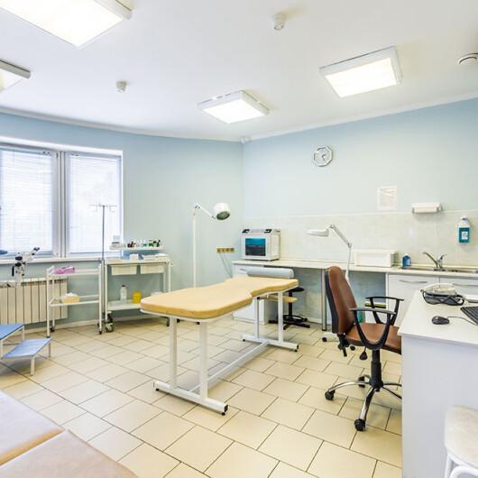 Медицинский центр Диагностика, фото №4